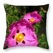 Color 41 Throw Pillow