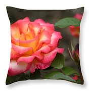 Color My World Throw Pillow