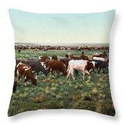 Colorado: Round Up Throw Pillow