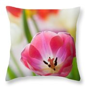 Colourful Tulips Throw Pillow