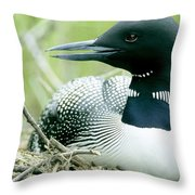Common Loon, La Mauricie National Park Throw Pillow