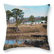 Conversations On The Hill Throw Pillow