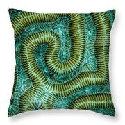 Coral Design Throw Pillow