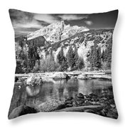 Cottonwood Creek Throw Pillow