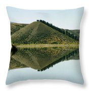 Cromwell Dam Reflections Throw Pillow