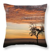 Crowned Cranes At Sunrise Throw Pillow