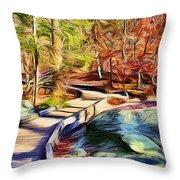 Cunningham Falls Walkway Throw Pillow
