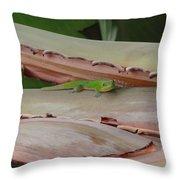 Curious Gecko Throw Pillow