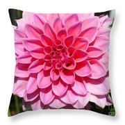 Dahlia Named Lucky Number Throw Pillow
