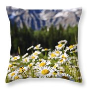 Daisies At Mount Robson Provincial Park Throw Pillow
