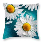 Daisies Floating In Water Throw Pillow