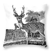 Deer Throw Pillow by Granger