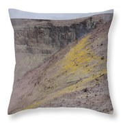 Degassing North Crater With Fumarolic Throw Pillow