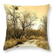 Desert Trail Throw Pillow