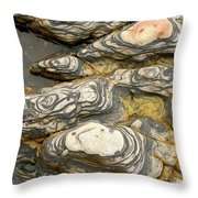 Detail Of Eroded Rocks Swirled Throw Pillow