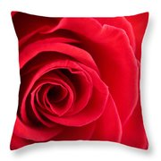 Detail Of Red Rose Throw Pillow