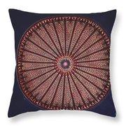 Diatom Throw Pillow