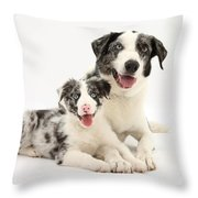 Dog And Puppy Throw Pillow