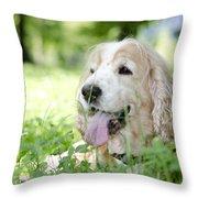 Dog On The Green Grass Throw Pillow