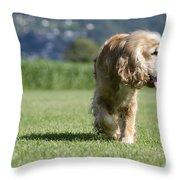 Dog Walking Throw Pillow