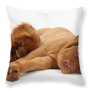 Dogue De Bordeaux And Cavalier King Throw Pillow
