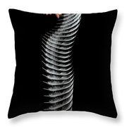 Dropping A Feather Throw Pillow