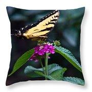 Eastern Tiger Swallowtail 3 Throw Pillow