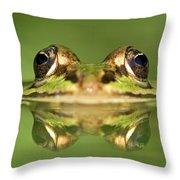 Edible Frog Rana Esculenta Throw Pillow