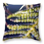 Enchanted Ferns Throw Pillow