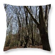 Epping Forest Throw Pillow