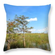 Everglades Landscape Throw Pillow