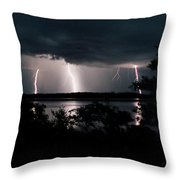 Everglades Triple Threat Throw Pillow