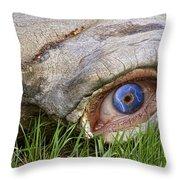 Eye Of A Dinosaur Lightning Throw Pillow