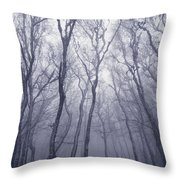 Fairy Tale Forest Throw Pillow
