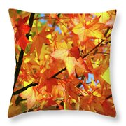 Fall Colors Throw Pillow by Carlos Caetano
