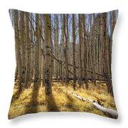 Fall On The Mountain  Throw Pillow