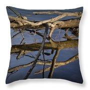 Fallen Tree Trunk With Reflections On The Muskegon River Throw Pillow