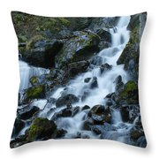 Fast Mover Throw Pillow