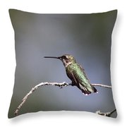 Feathers In Place Throw Pillow