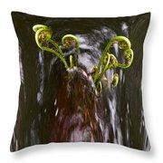 Ferns In A Stream Throw Pillow