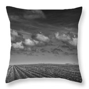 Field Furrows And Clouds In South East Texas Throw Pillow