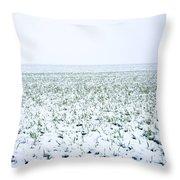 Field In Winter Throw Pillow