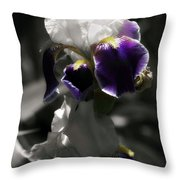 Filoli Iris Throw Pillow
