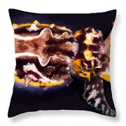 Flamboyant Cuttlefish Throw Pillow