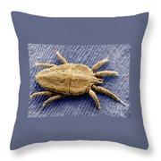 Flat Mite Throw Pillow
