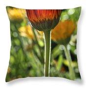 Floral Torch Throw Pillow