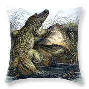 Florida Alligators Throw Pillow
