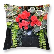 Flower Pots ........ 12 Throw Pillow