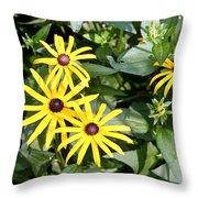 Flower Rudbeckia Fulgida In Full Throw Pillow