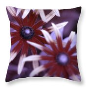 Flower Rudbeckia Fulgida In Uv Light Throw Pillow by Ted Kinsman